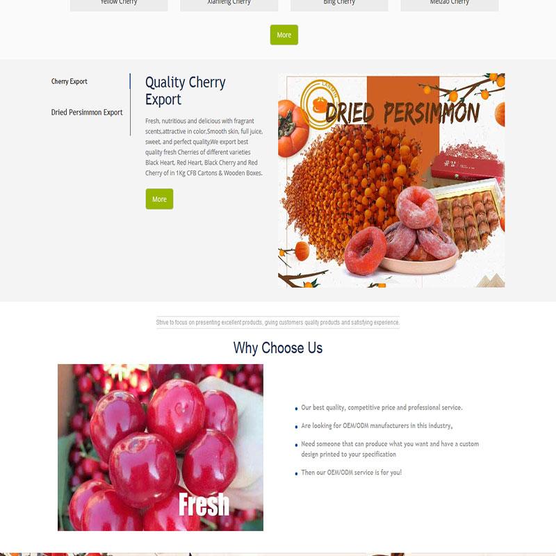 樱桃柿饼英语网站案例