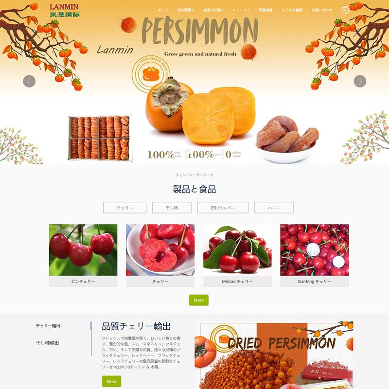 樱桃柿饼日语网站案例